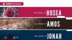 Hosea/Amos/Jonah (11 week series)