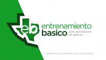 Basic Training - Church Planting - Spanish